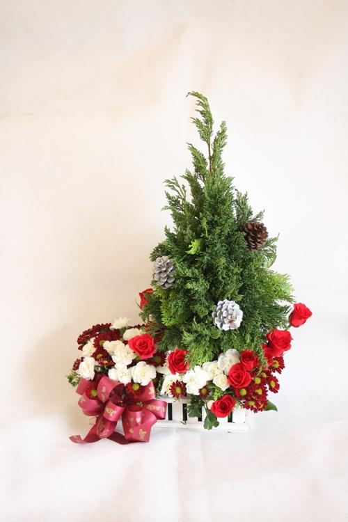Hoa ngày lễ - merry christmas-246