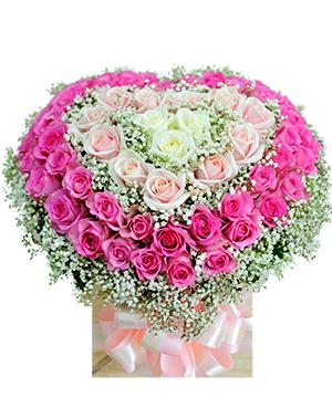 Hoa hồng hình trái tim -